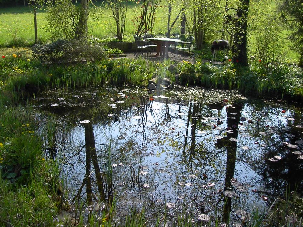 Biotop in Erlenbach
