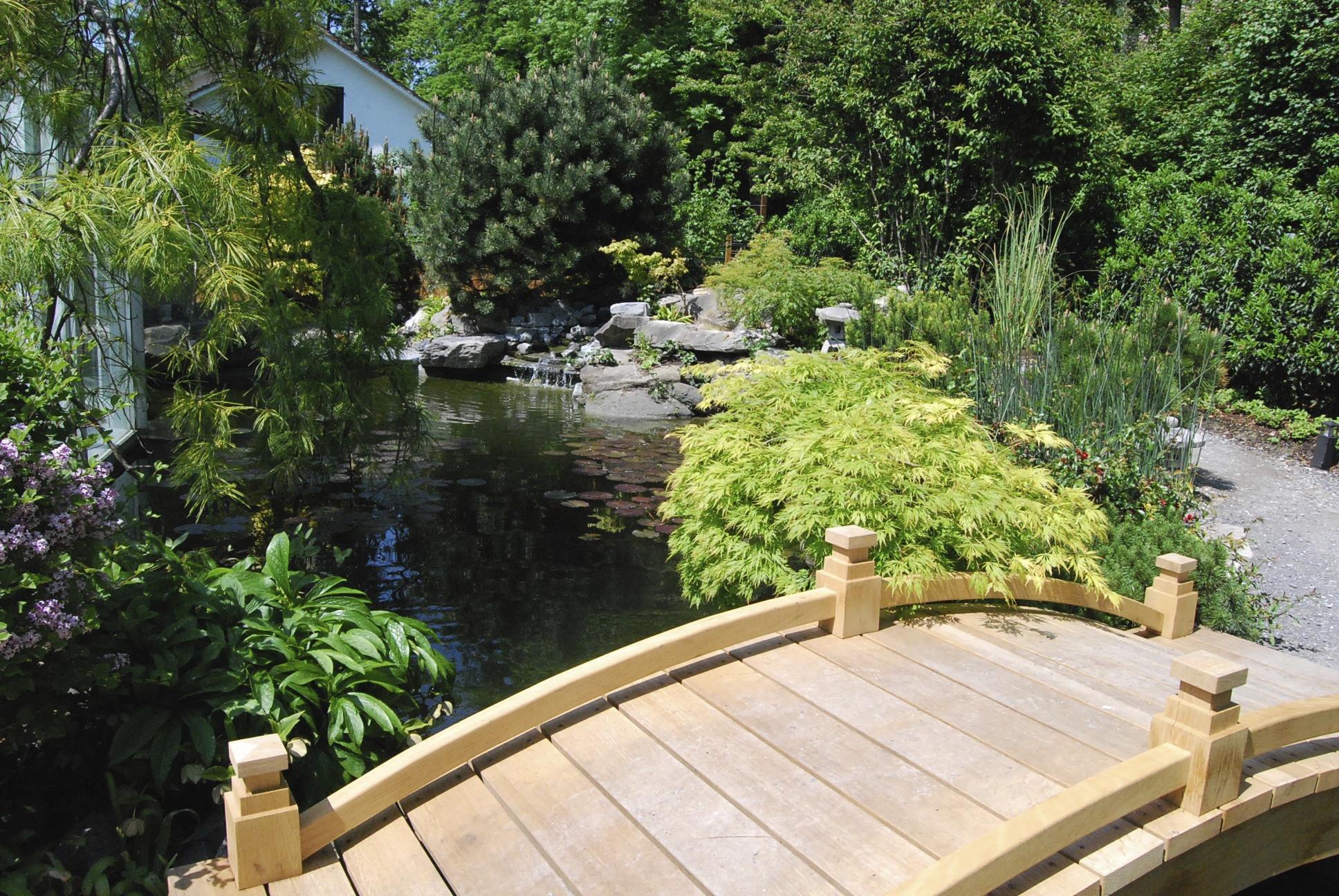 Kojteich mit Japanischem Garten und Brücke in Küsnacht