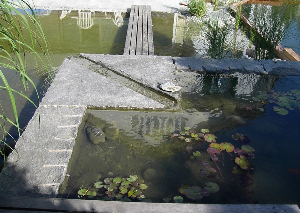 Biotop mit Wasserrinne in Zollikon