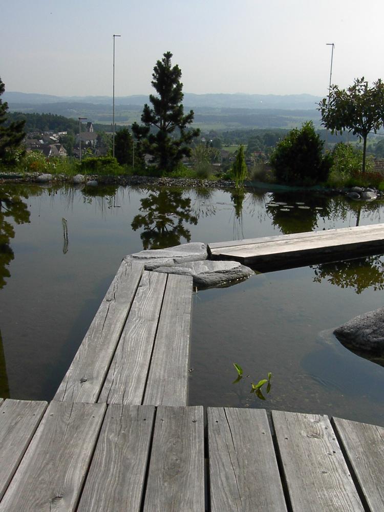 Holzbrücke über Biotop in Egg bei Zürich