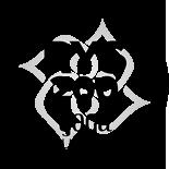 Ein Produkt von Yoga2day: Yoga und Meditation für jeden Tag.  Yoga Kurse & Workshops in Zürich Oerlikon. Yoga Ausbildung in Deutschland und Zürich. Yoga Teacher Training in Bali, Deutschland, Zürich, Chur, Basel. Yoga Weiterbildungen