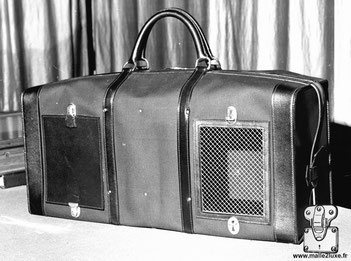 Bag to carry two dogs - In the United States