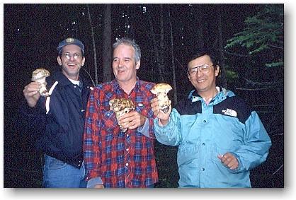 Canada Pine Mushroom Kispiox
