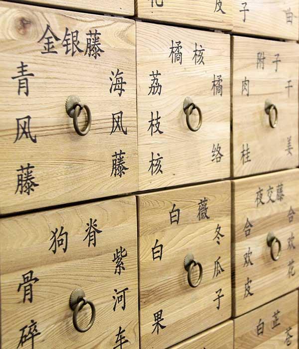 Japanische Akupunktur und Traditionelle Chinesische Medizin