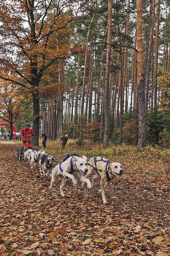 Quelle Bild:  n-land.de