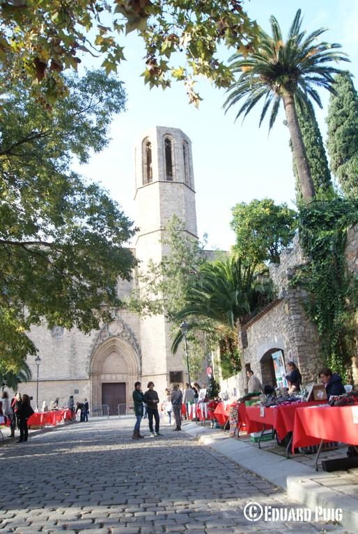 Autor: Eduard Puig Gomà-Camps