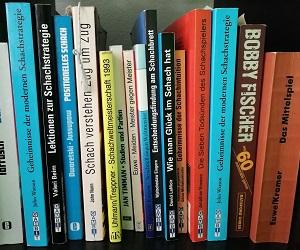 Buchempfehlungen Strategietraining Schach
