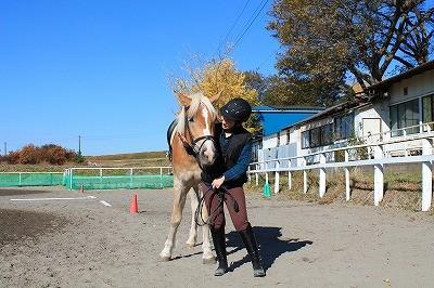 馬とのコミュニケーションを忘れない