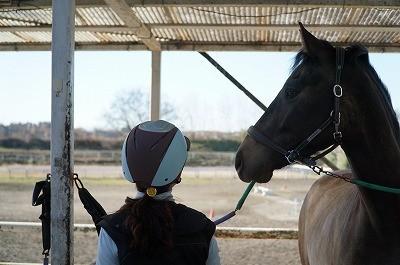 馬の気持ちと通じ合う