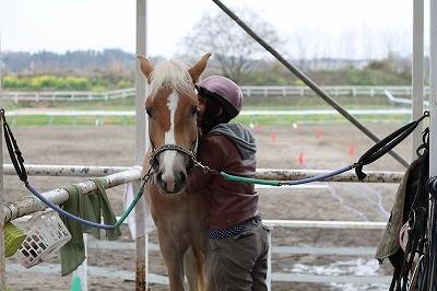 最高の体験乗馬