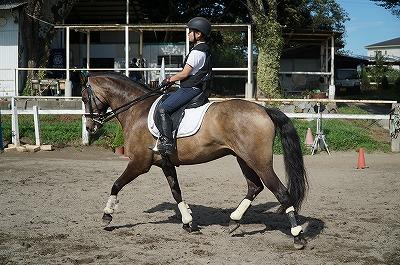 良い馬を体験して自分自身の成長を