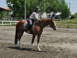 馬が好き!