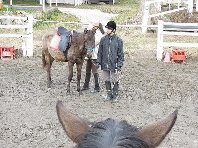 馬とのコミュニケーションを知ってほしいな