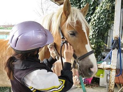 体験乗馬で馬とハッピーコミュニケーション