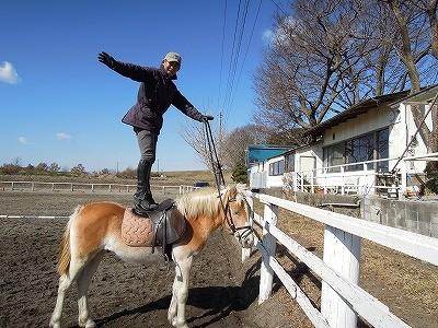 馬と遊ぶ、馬の上に立つ1