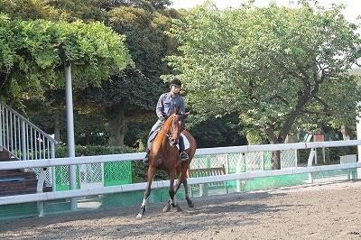自立して馬に乗れるようになる