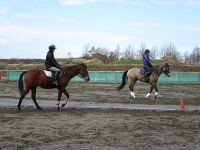 馬の目線で騎乗する
