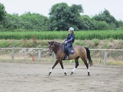 馬と踊ろう