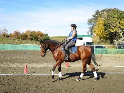 馬と一緒に楽しい気持ち