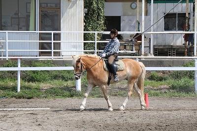乗馬は予習が大事