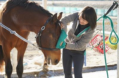 馬の気持ちをどれだけ考えているかな