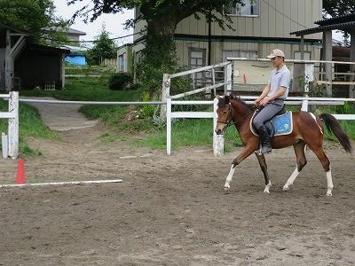 新馬調教 口向きを作る