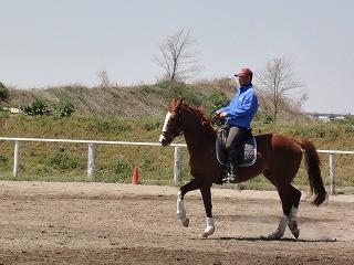 乗馬の楽しさ