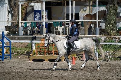 馬と息を合わせる乗馬クラブ