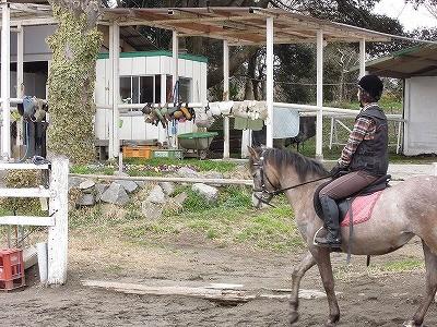 春が来たかな?馬と過ごす暖かい一日