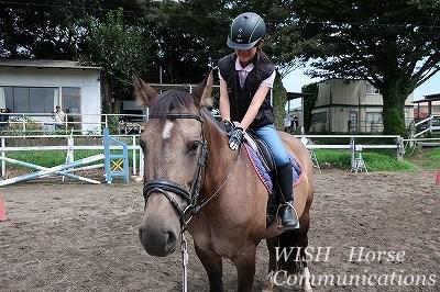 馬に優しい体験乗馬
