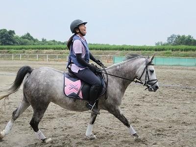 馬に乗っている時どこを見ているべきか