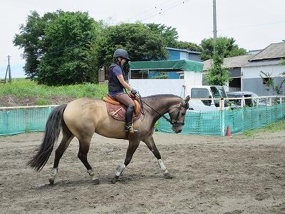 馬との会話を楽しむ乗馬!