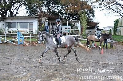 馬との会話で乗ろう!