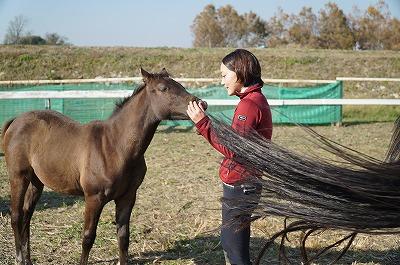 馬との楽しいふれあい