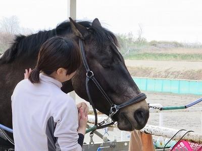 馬が頼ってくれる