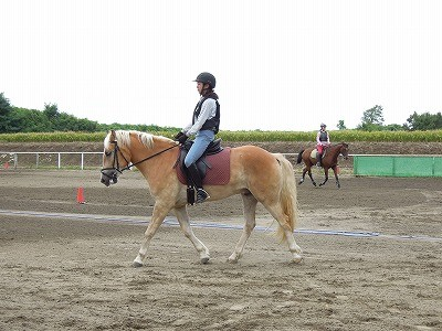 上手く乗ることと馬を良くすることは同じ