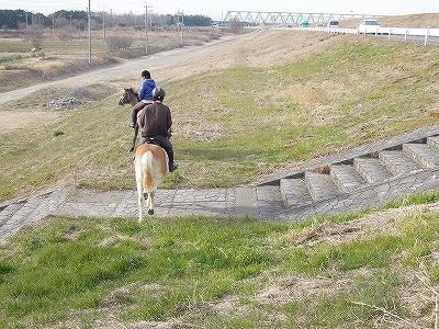 馬に乗って外乗に