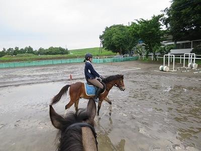 新馬調教 水たまりを通過