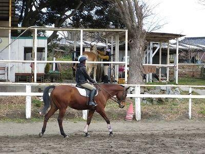 馬の気持ちを考えながら騎乗する
