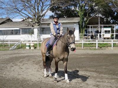 馬と楽しく
