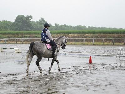 乗馬のゾーン
