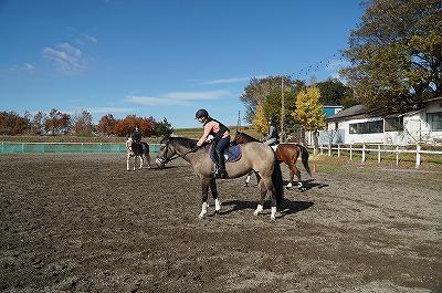 育つ乗馬成長する乗馬