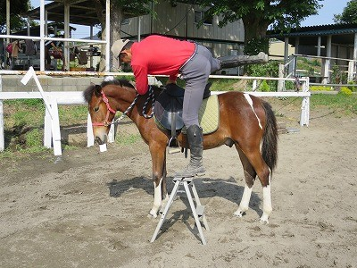 新馬調教 自分の身体の使い方