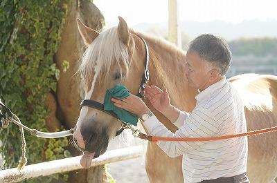 愛馬精神とホースマンシップ