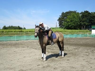 馬が信頼する乗馬