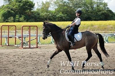 乗馬の練習