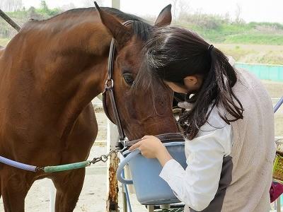 馬と溶け合う