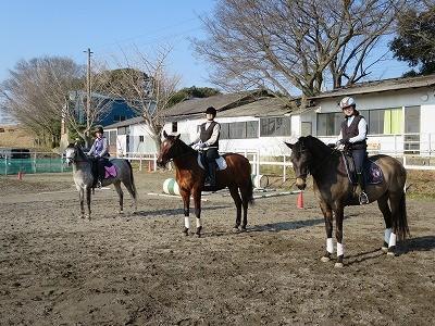 馬と一緒に楽しむ乗馬