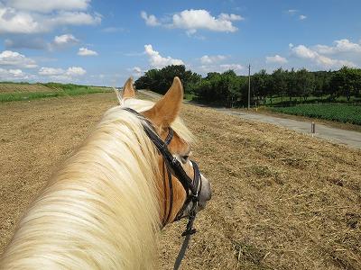 馬と自然体で