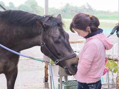 馬に愛される